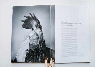 1984-2014 Visual Culture / European Photography / Café-Créme